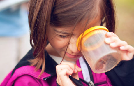 A young monarch tagger peeks inside an insect jar