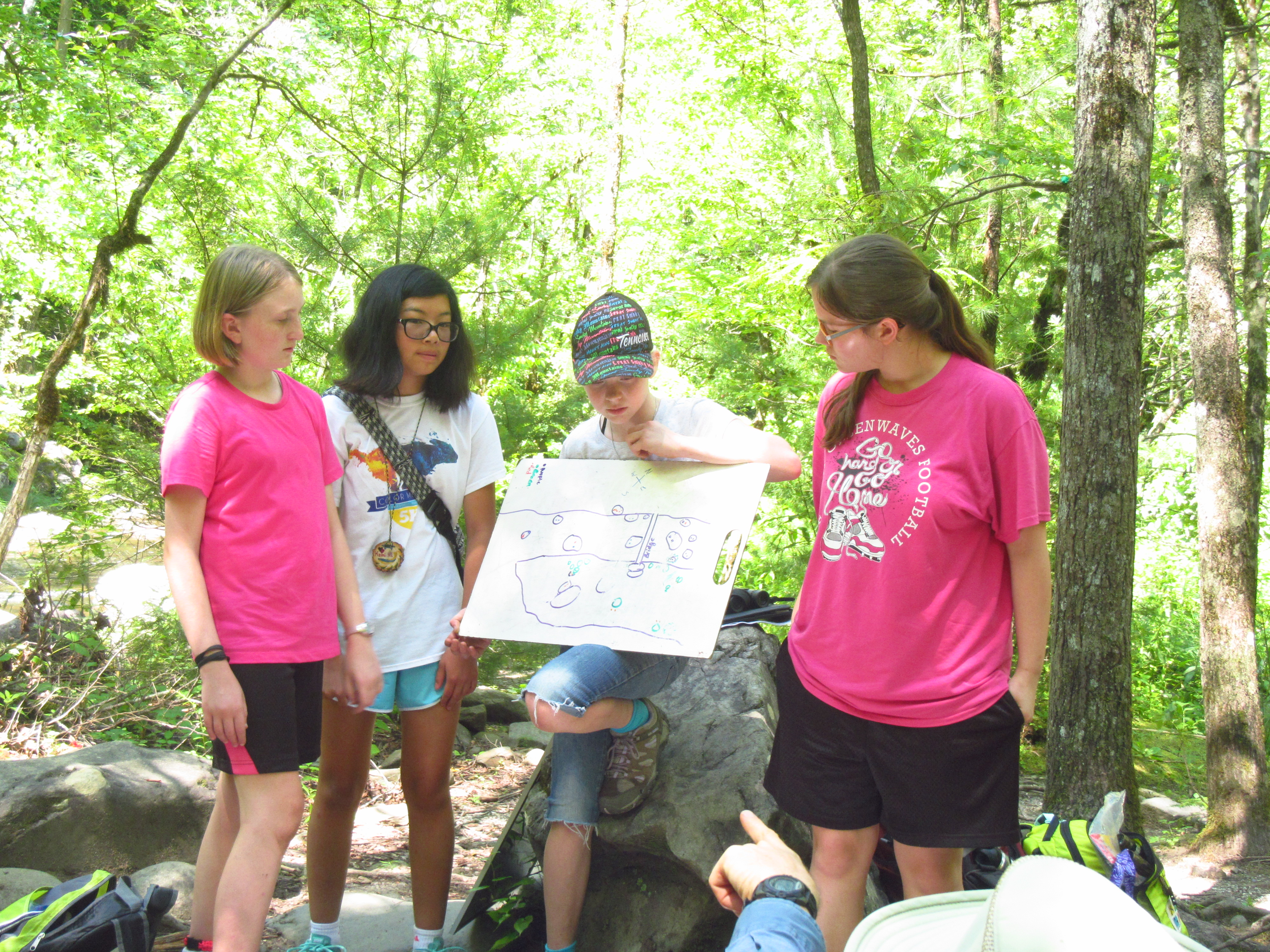 Summer Opportunities Earth And Environmental Science