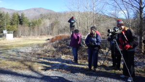 Tremont partners with Cornell Lab of Ornithology for