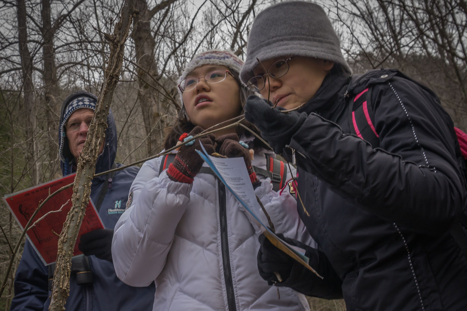 SANCP participants identify plants during Winter Woody Plant ID