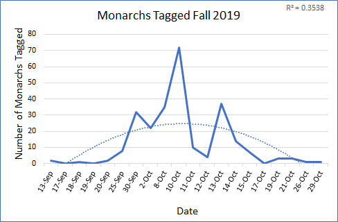 Figure 1. Monarchs tagged by volunteer community scientists during the 2019 tagging season, September-October. Figure includes public days only. Second order polynomial trendline (R² = 0.3538) shows a peak in monarchs tagged in early to mid October.