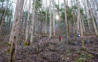 Lonsdale students hike in the Smokies