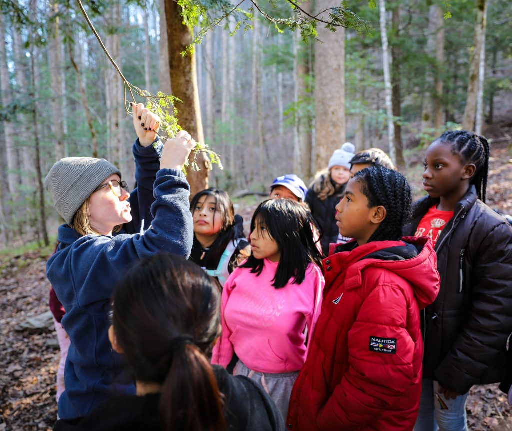 Lonsdale students wonder at a hemlock tree in Great Smoky Mountains National Park