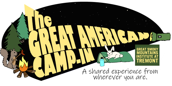 The Great American Camp-In