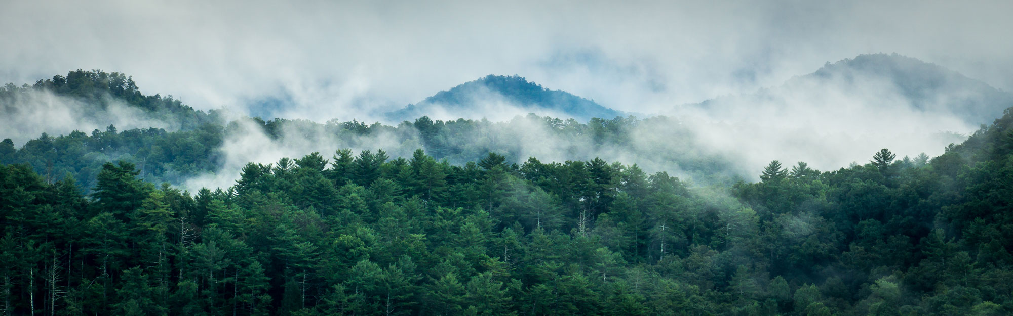 Smoky Mountains landscape photo by David Bryant