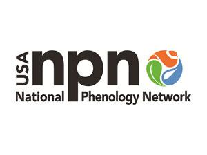 National Phenology Network logo