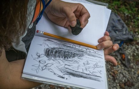 An educator makes sketches in a nature journal during Teacher Escape Weekend