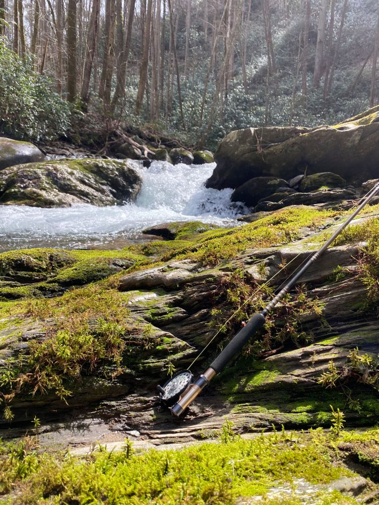 A sunny day along the river in the Smokies