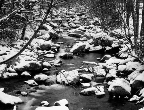 Photographing the Smokies in Winter
