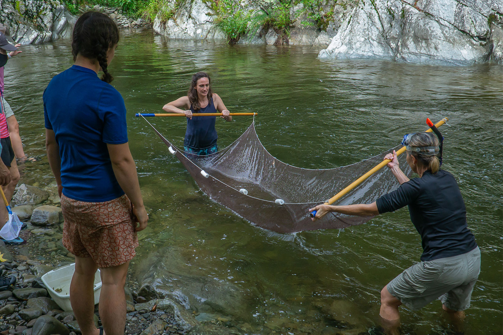 Students in the naturalist certification program study life in the streams of the Smokies