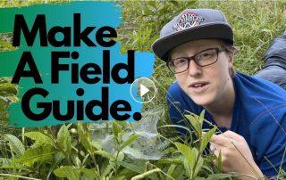 Make a Field Guide