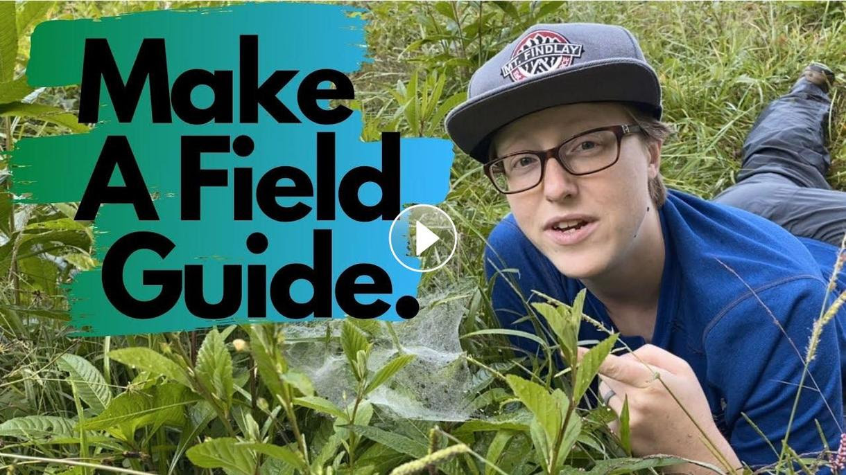 Make a Field Guide