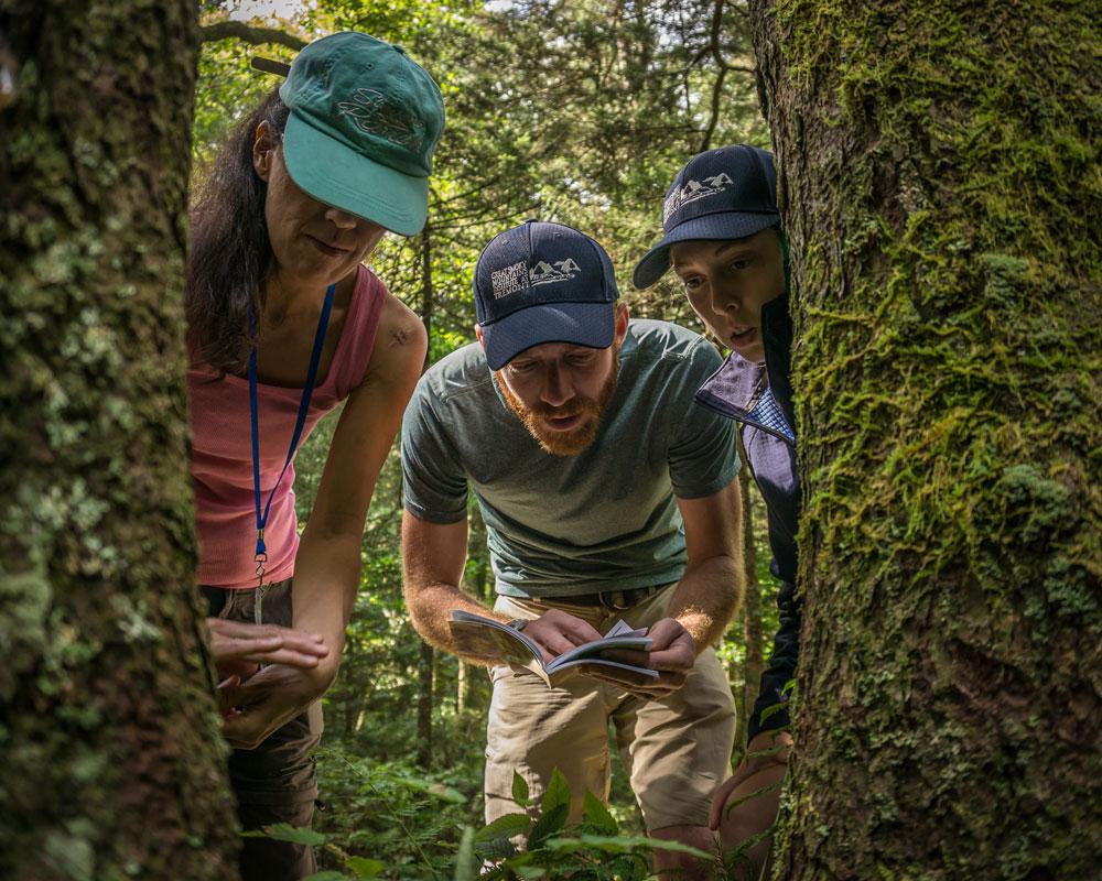 Southern Appalachian Naturalist Certification Program students study the ecology of the Smokies. Photo by David Bryant
