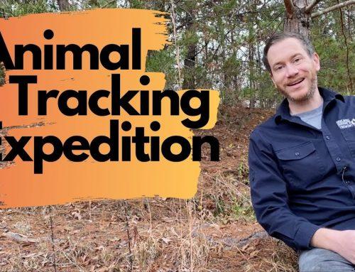 Weekly Wonder Season 1, Episode 7: Animal Tracking