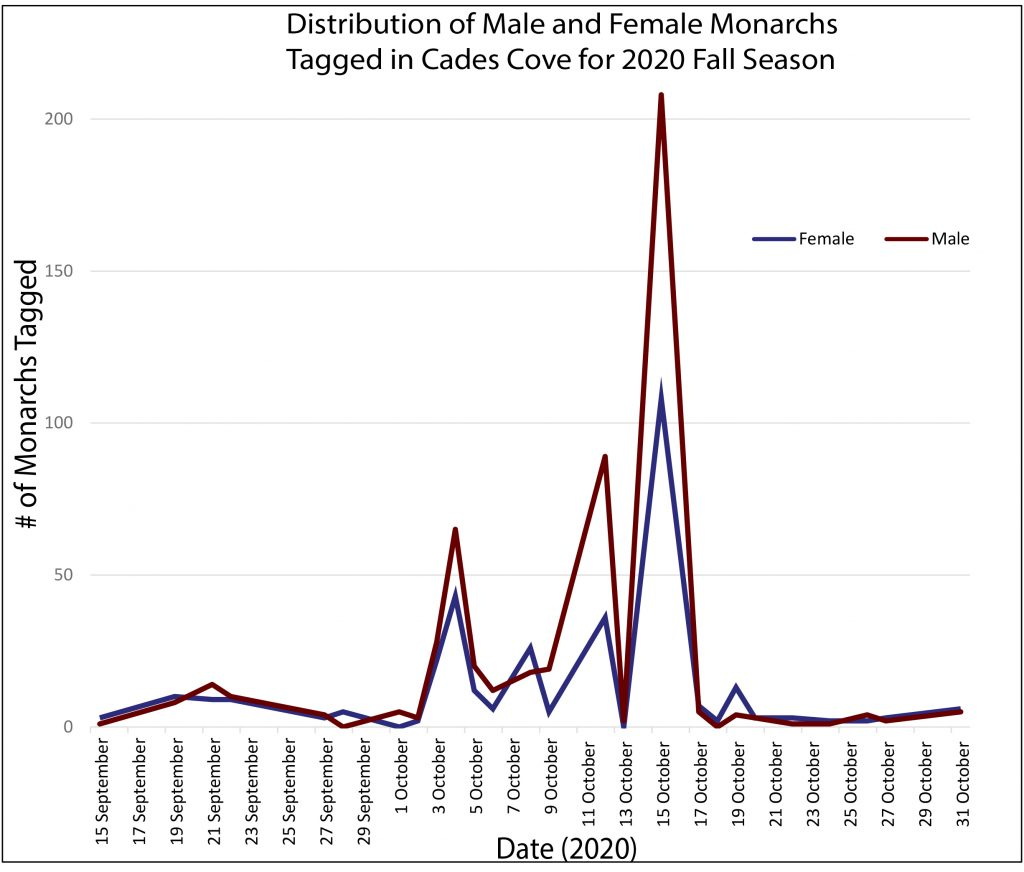 Distribution of Male and Female monarchs tagged during the 2020 season in Cades Cove. Total monarchs is 871, (340 Female, 531 Male).