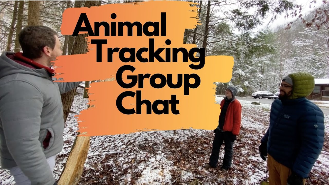 Weekly Wonder Episode 8 Animal Tracking Group Chat
