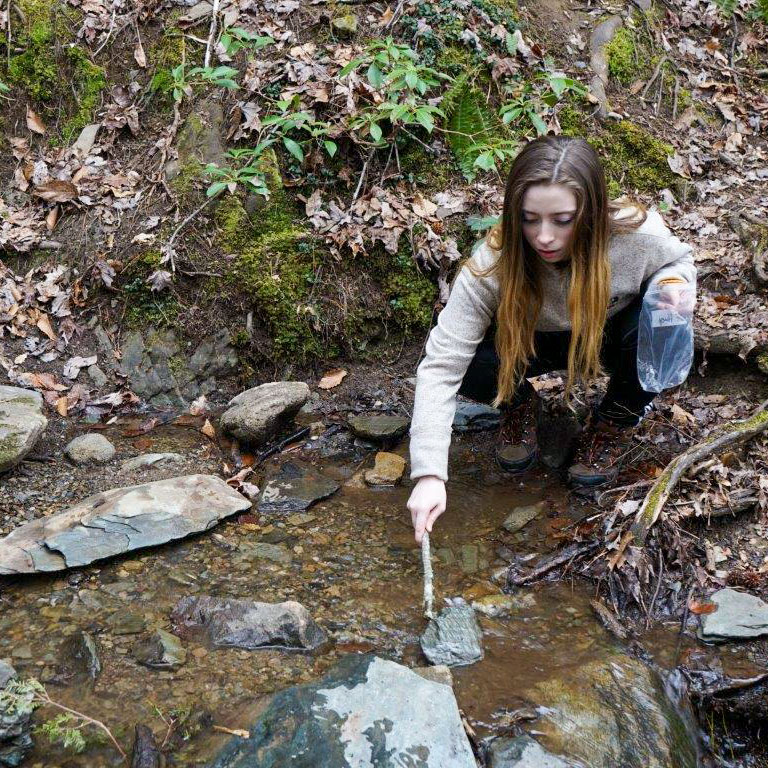 A high school student searches for salamanders in the Smokies