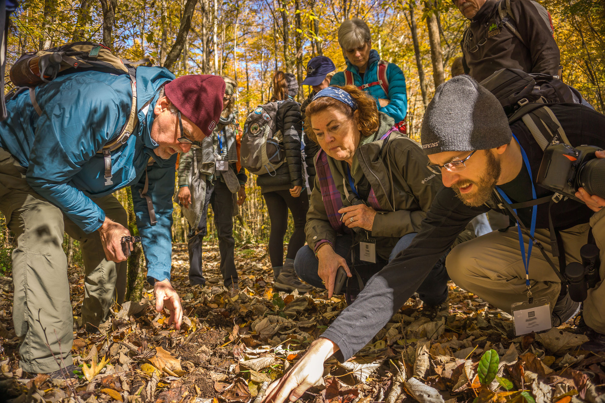 Naturalists in the Southern Appalachian Naturalist Certification Program track mammals in the Smokies