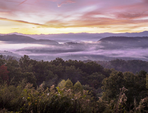 A Geologic Moment: Reflections on Living in the Great Smoky Mountains