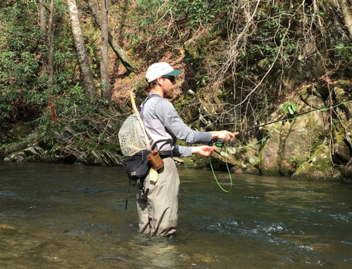 Whistle and Fish in Walker Valley: Locals, Tourists, and Transplants