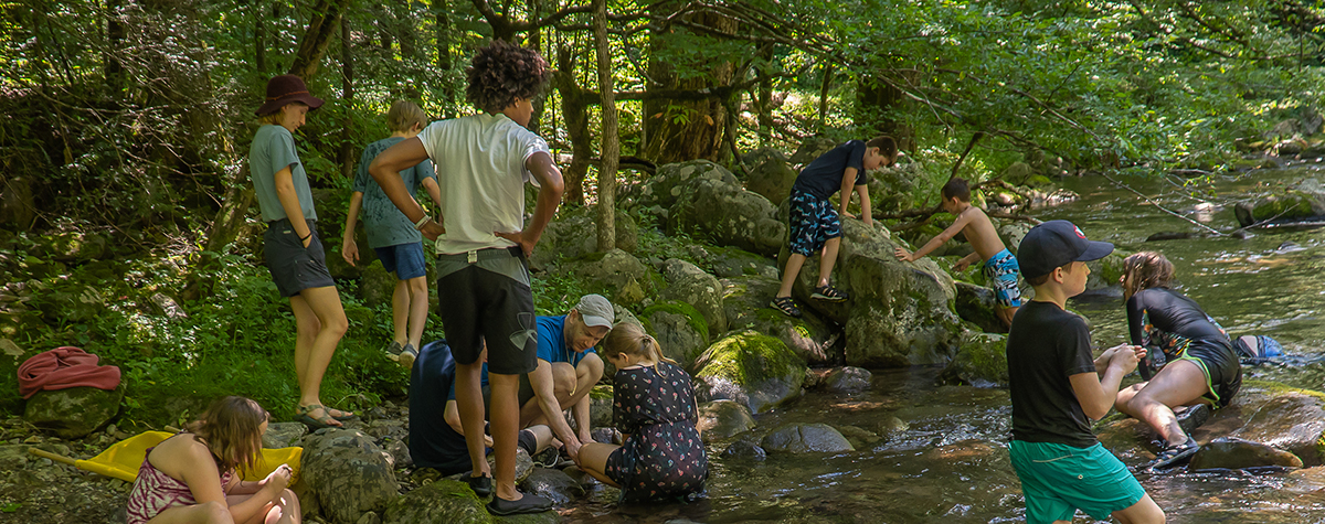Children explore the Middle Prong river during a Discovery Camp summer camp at Tremont