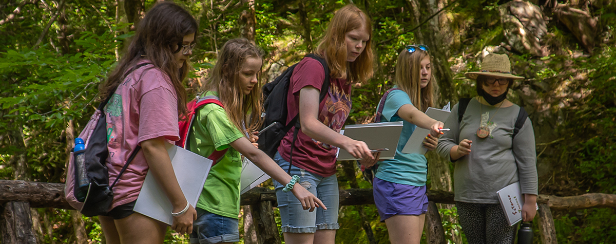 A group of girls point at something in the water during the Girls in Science Camp at Tremont.