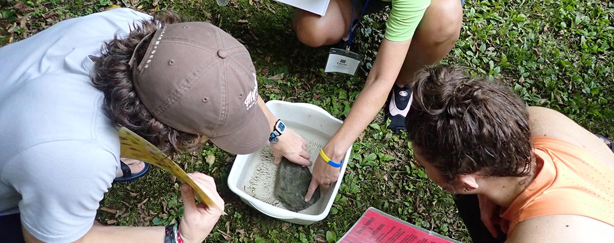 Teachers explore stream ecology during Teacher Escape Weekend.