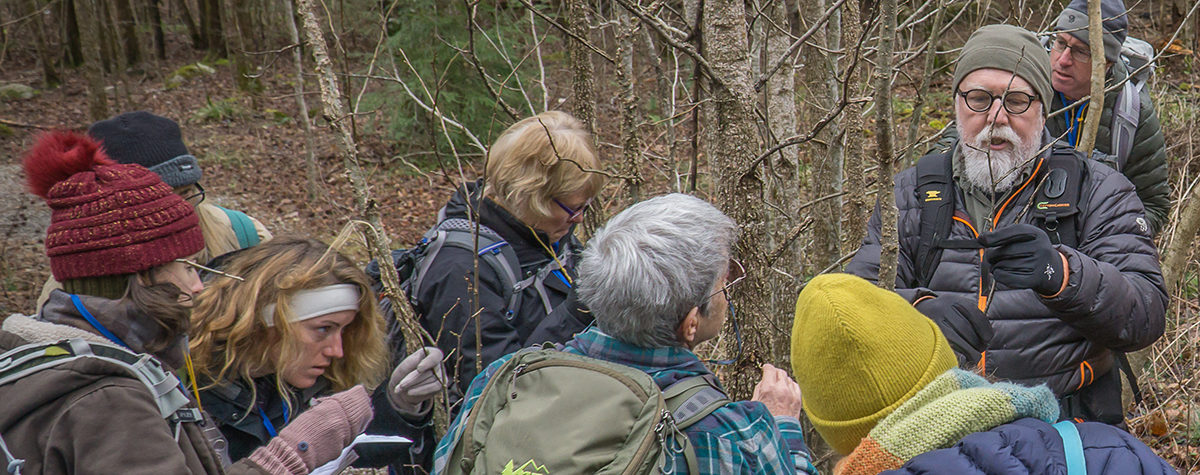 People gather around looking closely at tree branches in Tremont's Winter Woody Plant ID course