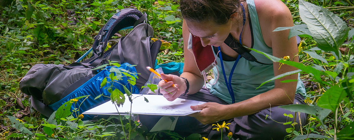 A woman draws on a large pad while looking at a plant during a Tremont plant workshop.